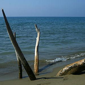 Beach1sml