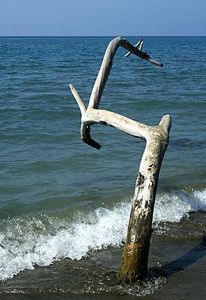 Beach4sml
